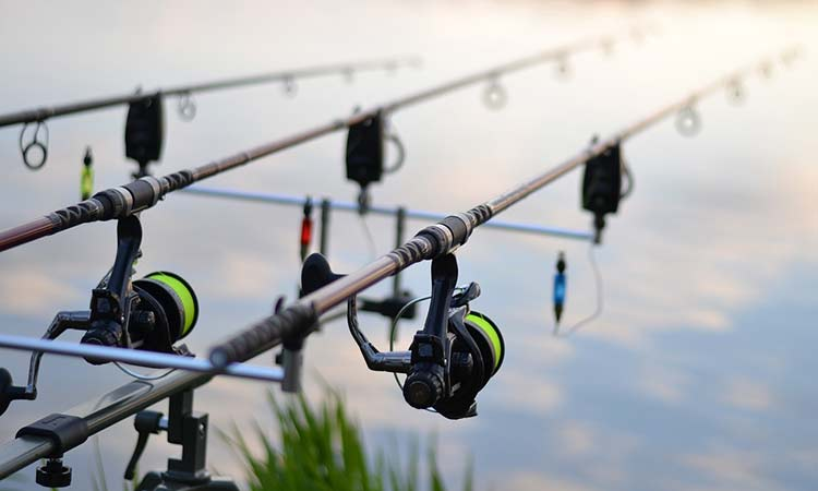 Fishing gear - rods & reels