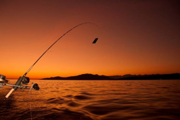 When Is the Best Time to Fish in Freshwater?