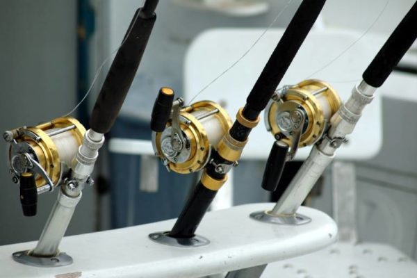 Types of Fishing Reels for Freshwater Fishing: Some 'reel' savvy advice