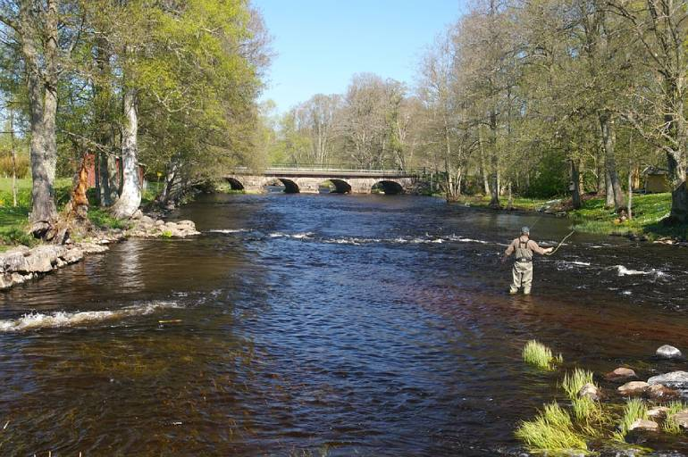 How to Fly Fish – The Basics of Fly Fishing
