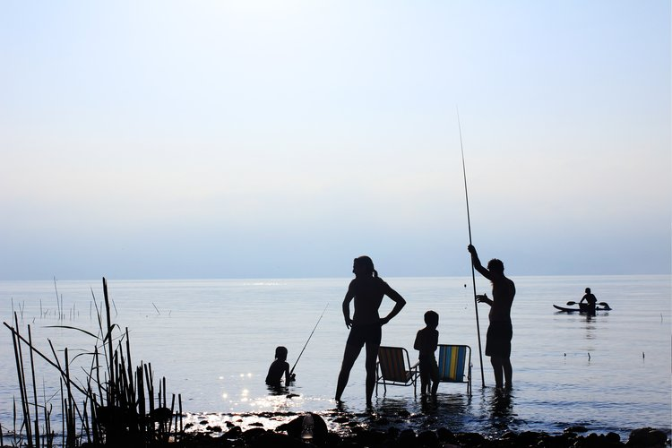 Free Fishing Days 2020 Consult Your State S Dates Here